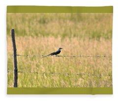 Scissor-tailed Flycatcher On Fence Fleece Blanket