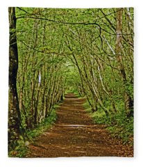 Scotland. Killiecrankie. Path Through The Trees. Fleece Blanket
