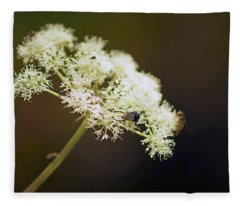 Scotland. Loch Rannoch. White Flowerhead. Fleece Blanket