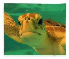 Sea Turtle Off The Mexican Coast - Dwp2086549 Fleece Blanket