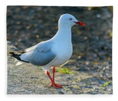 Seagull On The Breakwall Fleece Blanket
