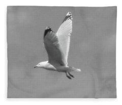 Seagull Over Llandudno Fleece Blanket