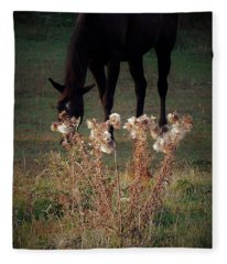 Seasons Fleece Blanket