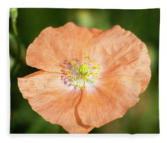 Shirley Poppy 2018-17 Fleece Blanket