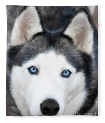 Siberian Husky Mask A91818 Fleece Blanket