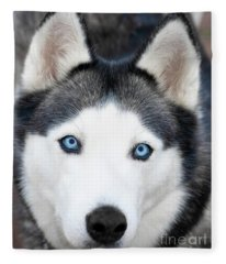 Siberian Husky Mask A91818 Fleece Blanket