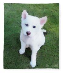 Siberian Husky Puppy A030619 Fleece Blanket