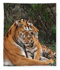 Siberian Tiger Mother And Cub Endangered Species Wildlife Rescue Fleece Blanket