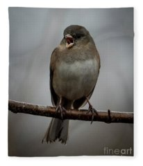 Singing Junco 1 Fleece Blanket