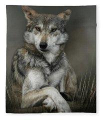 Sitting Pretty Fleece Blanket