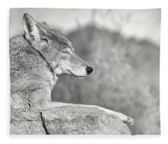Sleepy Coyote Fleece Blanket