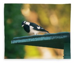 Small Magpie Lark Outside In The Afternoon Fleece Blanket