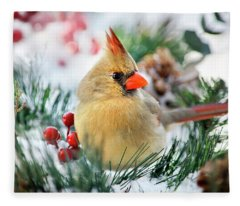 Fleece Blanket featuring the photograph Snow Cardinal by Christina Rollo