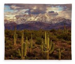 Fleece Blanket featuring the photograph Snowy Dreams by Rick Furmanek