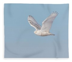 Snowy Owl 2018-23 Fleece Blanket