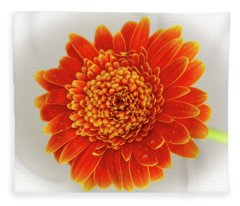 Soft Large Orange Gerber Daisy Fleece Blanket