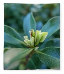 Softly Blooming Fleece Blanket
