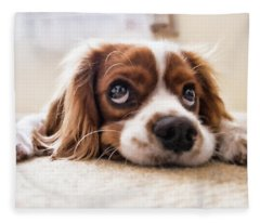 Spaniel Puppy Dwp2785074 Fleece Blanket