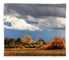 Spot Light Fleece Blanket