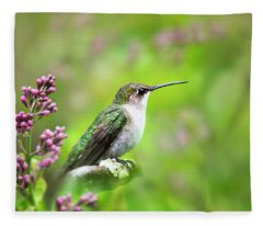 Fleece Blanket featuring the photograph Spring Beauty Ruby Throat Hummingbird by Christina Rollo