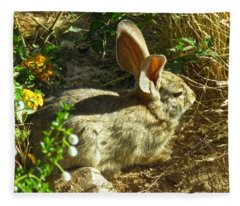 Fleece Blanket featuring the photograph Spring Desert Cottontail by Judy Kennedy