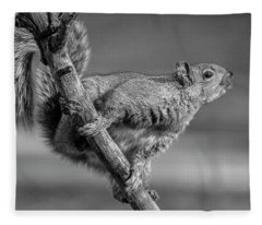 Squirrel In Black And White Fleece Blanket