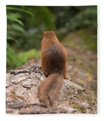 Squirrel's Tale Fleece Blanket