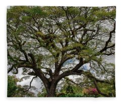 St. Kitts Saman Tree Fleece Blanket