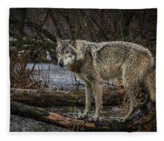 Stay Dry Fleece Blanket