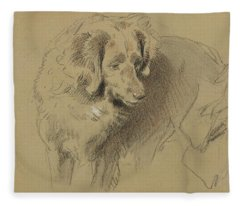 Study Of A Dog Fleece Blanket