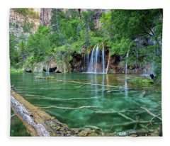 Submerged Log, Hanging Lake Colorado Fleece Blanket