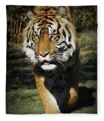 Sumatran Tiger Face To Face Fleece Blanket