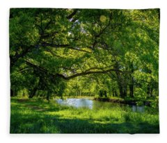 Summer Morning In The Park Fleece Blanket