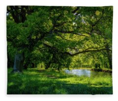 Panorama Photographs Fleece Blankets