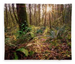 Fleece Blanket featuring the photograph Sun Star In Tryon Creek State Park by Whitney Goodey