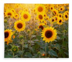 Sunflowers Field Fleece Blanket