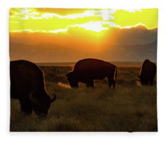 Sunset On The Plains Of Colorado Fleece Blanket