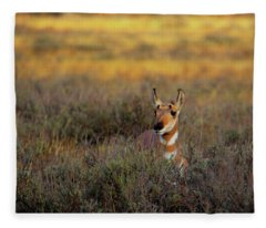 Sunset Pronghorn Fleece Blanket