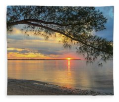 Sunset Under The Australian Pine Fleece Blanket