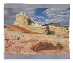 Sweeping Structures In Sandstone Fleece Blanket