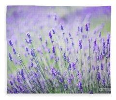 Sweet Lavender Fleece Blanket