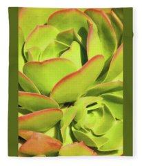 Sweet Succulents I Fleece Blanket