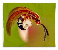 Swirly Wasp Fleece Blanket