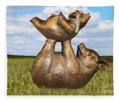 Teaching A Pig To Fly - Mother Pig In Grassy Field Holds Up Baby Pig With Flying Helmet To Teach It  Fleece Blanket