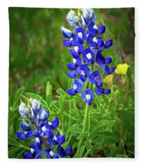 Texas Bluebonnet  Fleece Blanket