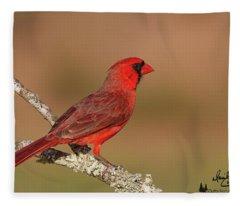 Texas Cardinal Fleece Blanket