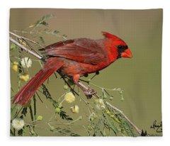 Texas Red Fleece Blanket