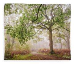 The Autumn Path Fleece Blanket
