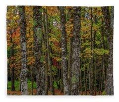 The Fall Woods Fleece Blanket