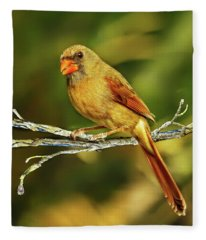 The Female Cardinal Fleece Blanket